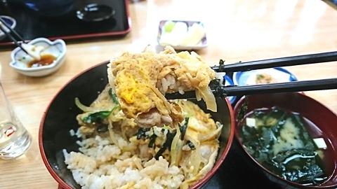 尾張屋:⑫親子丼箸で持って191117