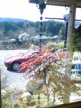 そば処楓:店�窓から見える風景�100221