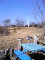そば処楓:店�周囲の風景�100221