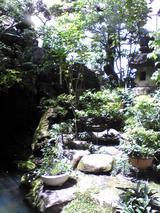 米久本店:店�小座敷前の中庭�090426.jpg