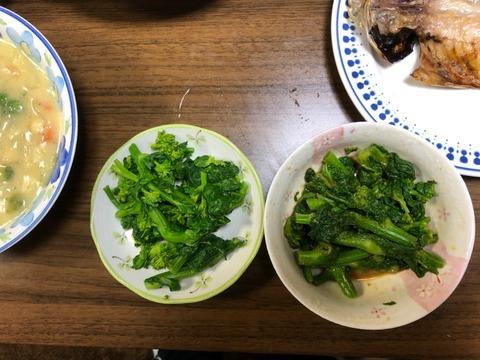 菜の花辛し和え210326