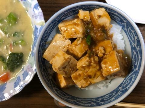 マーボー丼210324