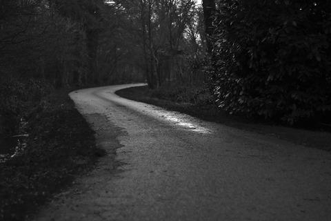 rural-road-351491_960_720