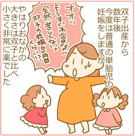 双子妊娠⑥とにかく腹がでかい!06