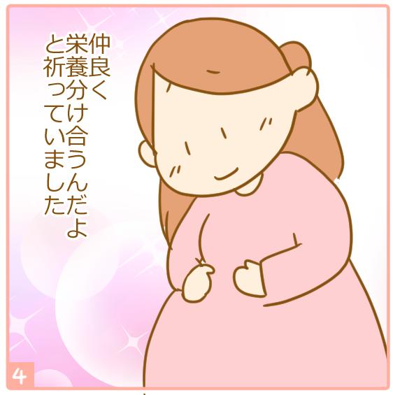 双子妊娠⑭体重差が心配4