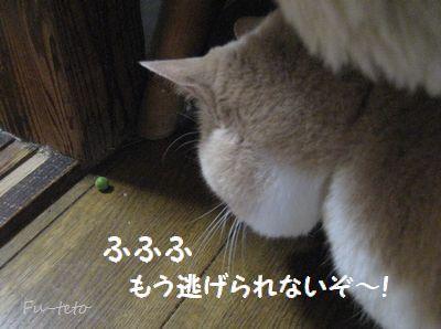 514-6