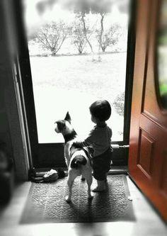犬と赤ちゃん40