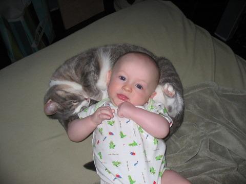 猫と赤ちゃん43