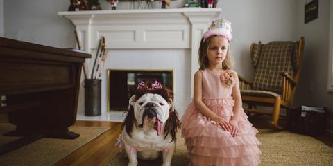 犬と赤ちゃん50
