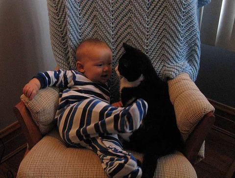 猫と赤ちゃん21