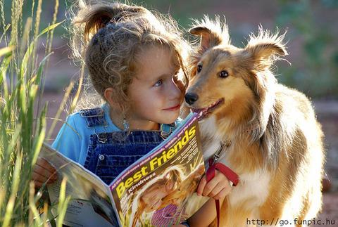 犬と赤ちゃん6