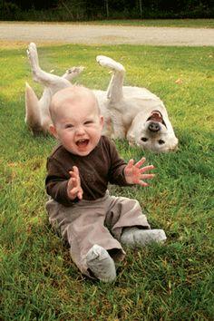 犬と赤ちゃん14