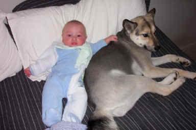 犬と赤ちゃん56