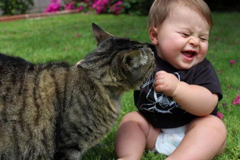 猫と赤ちゃん19