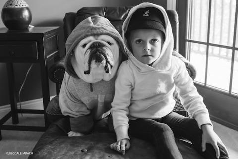 犬と赤ちゃん15