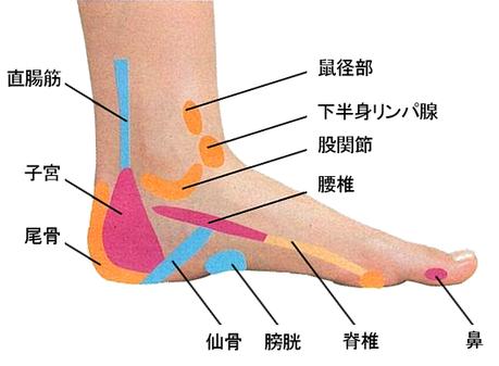足内側のつぼ