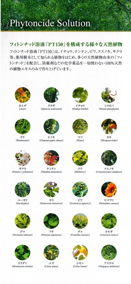 フィトンチッド植物成分