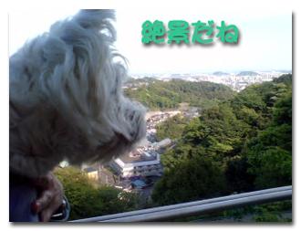絶景〜キキ