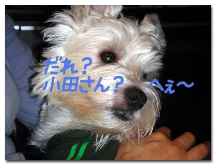 小田さ〜ん