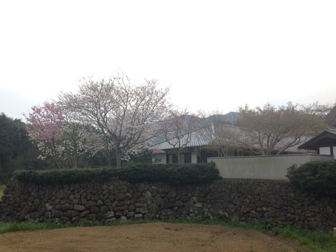 2014-03-28-17-19-53