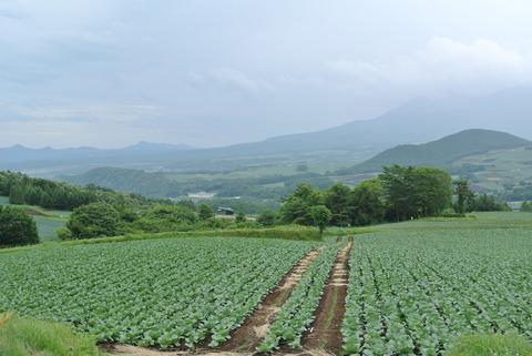 20120713_長野群馬_060