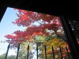 10,24、紅葉前庭