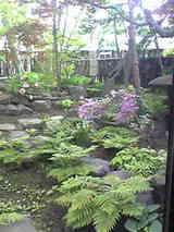 岡田邸初夏2009