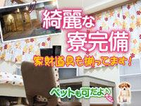 http://livedoor.blogimg.jp/fuzoku_kyujin/imgs/5/b/5b4852ad.jpg