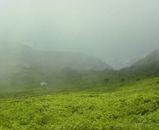 またまた霧の中に