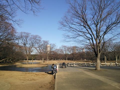 代々木公園でタヌキに遭遇。都会の公園のランニングは思いがけないものに遭遇する。。。