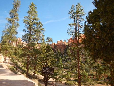 ユタ州 キャニオンランドを行く(9) Navajo Loop Trail (ナバホループトレイル), Bryce Canyon