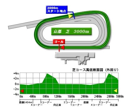 kyoto_turf_3000