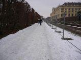 Schönbrunn3