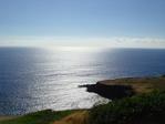 三日目 Honuapo Bay附近のビューポイントからクジラが見えました
