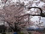 2014-04-03-12-04-32