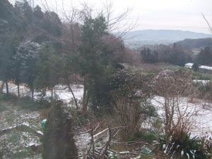 2012_0117初雪0007