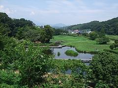 2011_0812中井町0084