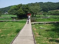 2011_0812中井町0087