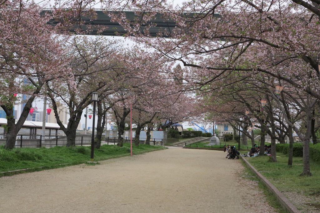 花咲かすおじさん                g2009h