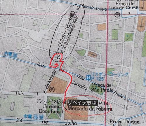 IMG_9102ビッカ線マップ