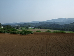 2011_0812中井町0122