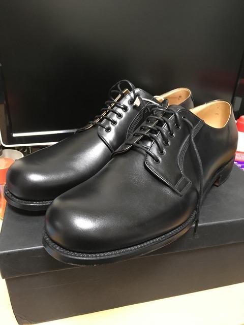 【画像】超高級革靴買ったんだが???