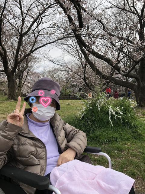 2019お花見4