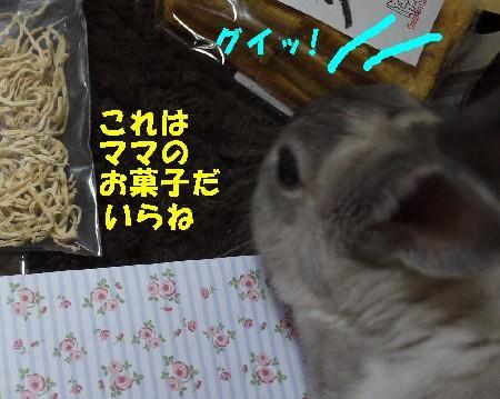 ぴぃままさん3