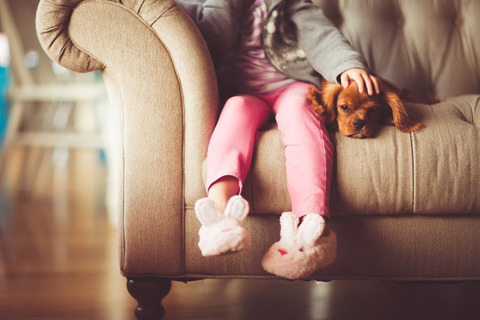 犬は「エサをくれた見知らぬ人に恩を返さない」という研究結果!!