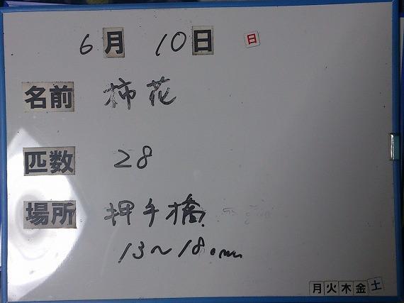 08e88d2c.jpg