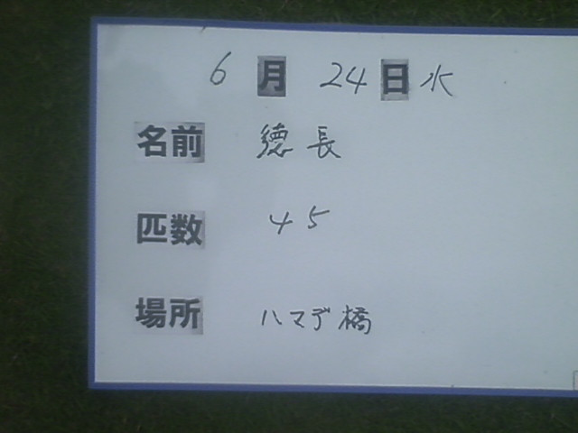 2c8aaf49.jpg