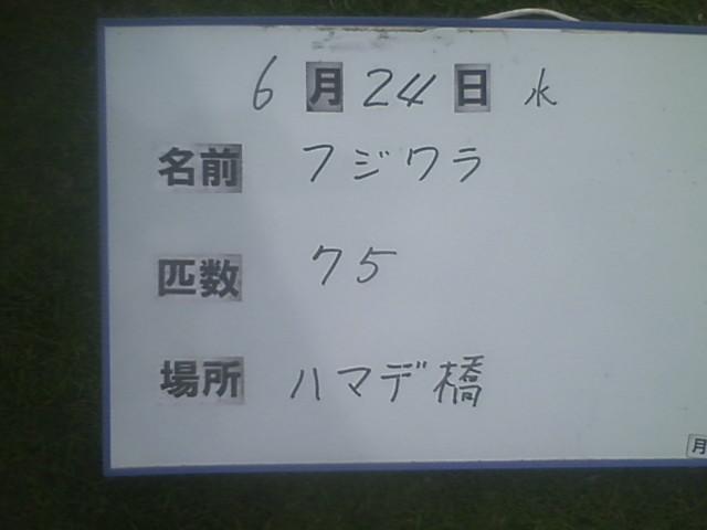 439ed4b3.jpg
