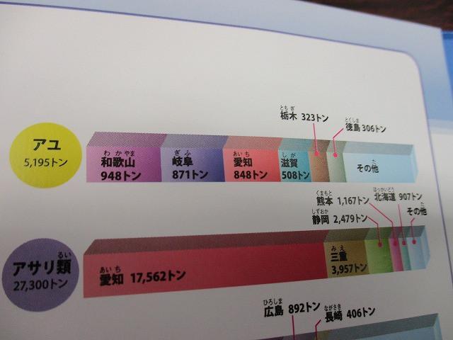 7361a05f.jpg