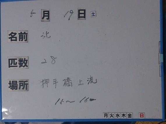 c71f637c.jpg